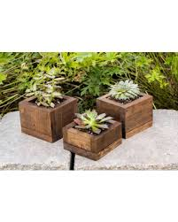 small planter amazing deal on succulent planter rustic boxes small succulent