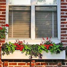 185 best window boxes pictures ideas for flower window boxes and