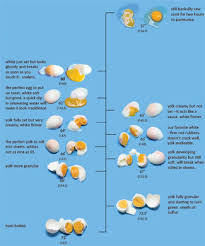 How Long Can Hard Boiled Eggs Sit At Room Temperature - hard boiled eggs at altitude home cooking eggs chowhound