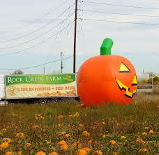 Pumpkin Patch St Louis Mo by The Pumpkin Patch At Rock Creek Farm U2013 Colorado Traveling Ducks