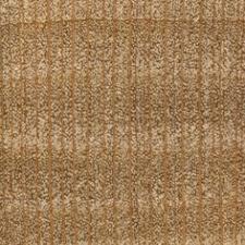 lacewood endgrain 10x wood types species wood database