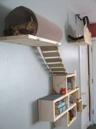 cat adventure and escape wall 12 steps with pictures
