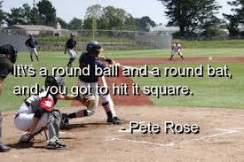 Baseball Memes - mlb baseball memes sports fan dog collars