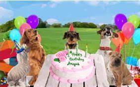 dog birthday cards sloppy kiss cards
