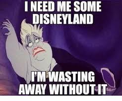 Disneyland Meme - i need me some disneyland uimwasting away without it disneyland