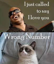 Funny Memes About Love - amazing and funny collection of i love you memes best wishes and