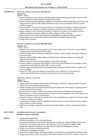 chartered accountant resume grant analyst cover letter sample resume shalomhouse us