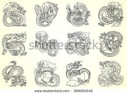 chinese dragon stock images royalty free images u0026 vectors