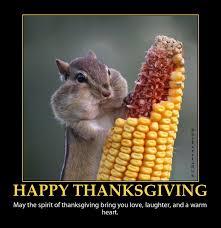 Happy Thanksgiving Meme - pin by sherri standler on cool photos pinterest happy