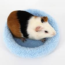 Guinea Pig Cages Cheap Online Get Cheap Guinea Pig Cages Aliexpress Com Alibaba Group