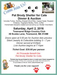 pat brody shelter for cats welcome to our web site