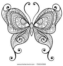 decorative detailed butterfly drawing coloring stock
