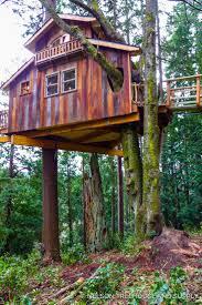 3291 best tree houses images on pinterest treehouses