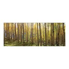 home decor trees yosemite home decor 63 in x 24 in