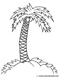 palm tree coloring pages for kids coloring home