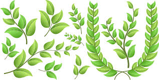 free green vector leaf elements photoshop graphics and add ons