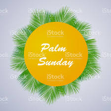palm leaves for palm sunday illustration of background with palm leaves for palm sunday stock