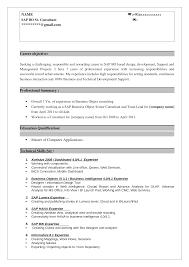 Sap Bo Resume Sample Sap Lumira Sample Resume 2 Documents