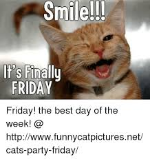 Best Day Meme - ile it s finally friday friday the best day of the week