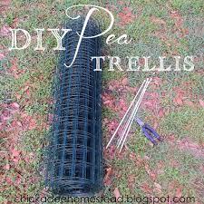 easy diy pea trellis