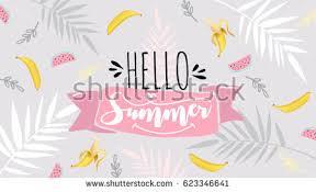 hello summer banner trendy texture season stock vector 623346638