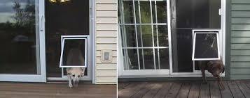doggie door in glass door screen door with a pet door memphis the glass guru of memphis tn