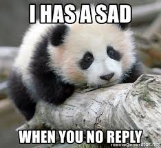 Why You No Reply Meme - i has a sad when you no reply sad panda meme generator