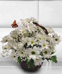 florist ga birthday flowers bouquets gifts delivery morrow ga morrow florist