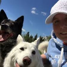 Dog Walking Service PetSitter