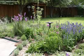 5607 landscape texas native plants perennials that are drought