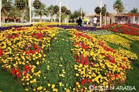 susie of arabia 2017 yanbu flower festival coming soon
