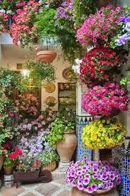2081 best flowers u0026 plants images on pinterest flowers garden