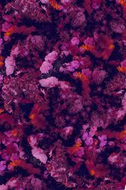 athleta floral print u2014 afbh