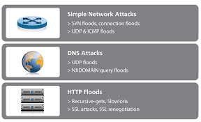Anonymous Dns Amplification Attacks For by The Ddos Threat Spectrum