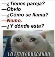 Mexican Memes Tumblr - que sad la historia de mi vida tumblr pinterest memes