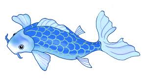 koi fish clipart transparent pencil and in color koi fish