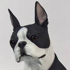 boston cremation boston terrier lifesize figurine pet cremation urn