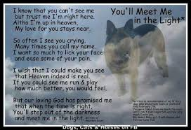 grieving loss of pet dog poem pet loss grief on we heart it