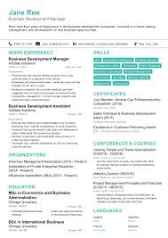 Developer Resume Sample by 21st Century Résumé Examples And Samples How To Create One