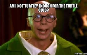 Club Meme - am i not turtley enough for the turtle club meme