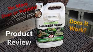 Rabbit Repellent For Gardens by Liquid Fence Product Review Keep Those Deer And Rabbits Out