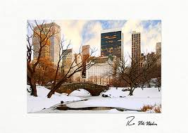 Business Printed Christmas Cards Park Bridge Winter New York City Personalized Christmas Cards