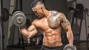 arm blasting workouts a beginner s guide