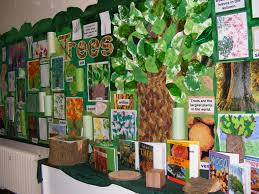coleshill infants tree project mission update news from the