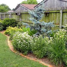 Texas Landscape Plants by South Central Gardening Landscaping Ideas You Can Use