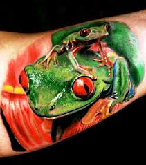 eyed green tree frog