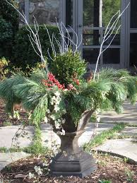 lovely winter container garden idea the most wonderful time of