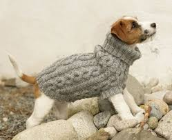 crochet pattern for dog coat top 5 free dog sweater knitting patterns free pattern dog jumpers