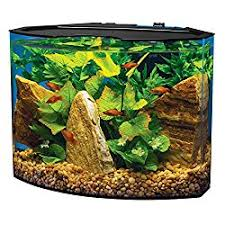 Fluval Edge Aquascape Best Betta Tanks 11 Cool Aquarium Reviews Aquascape Addiction