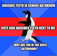 Cute Penguin Meme - socially awkward awesome awkward penguin memes quickmeme